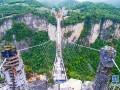 张家界大峡谷玻璃桥航拍视频,震撼你眼球! (131播放)