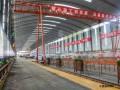 福建:顺邵高速项目A3标获评福建省标准化管理典型示范标段