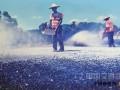 福建农村路养护:从包工头到路长